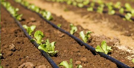 irrigazione agricola bologna