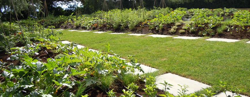 irrigazione goccia orti giardini ala gocciolante leggera
