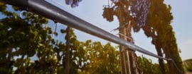 microirrigazione gocciolatori idrop irritec