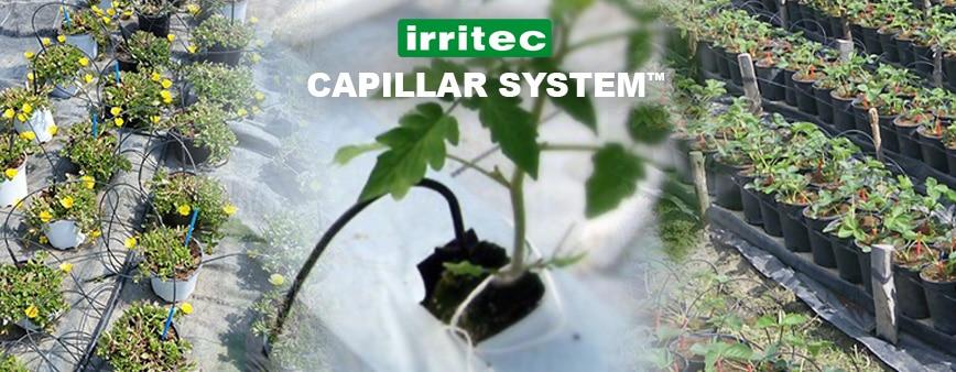 Impianto microirrigazione Capillar System Irritec